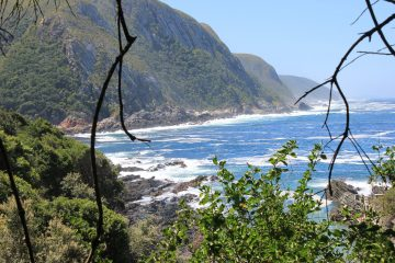 Wild coast of the Garden Route